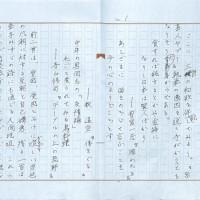 沼正三 自筆原稿:『最初の家畜は人間だった』