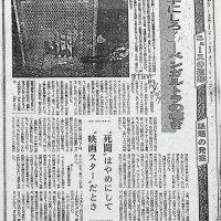 『勝手にしろ!』---ベンガルのトラの嘆き:東京新聞(昭和52年2月9日)